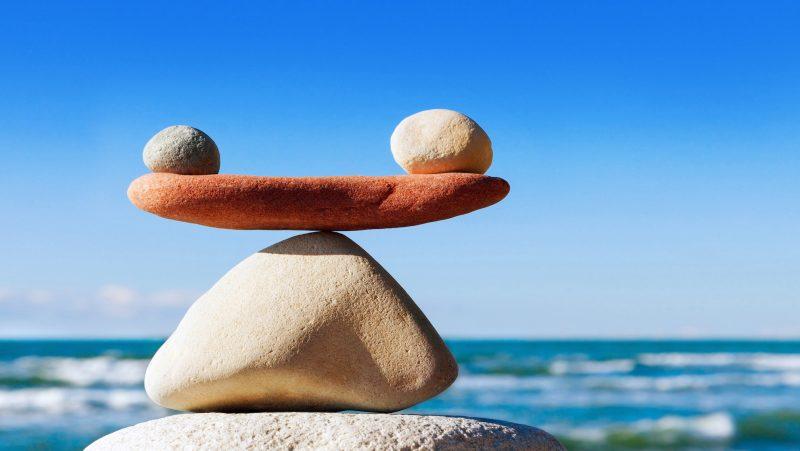 La vita in spiaggia e l'equilibrio naturale.