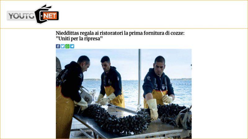 """Nieddittas regala ai ristoratori la prima fornitura di cozze: """"Uniti per la ripresa"""""""