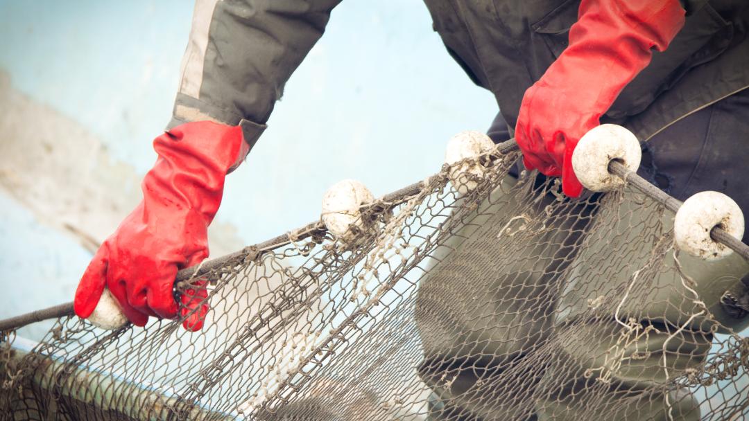 Per pescare al mare ci vuole la licenza?