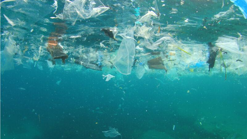 Quanta plastica c'è nel mare?